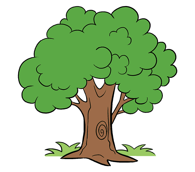 How-to-draw-a-cartoon-tree-20.png